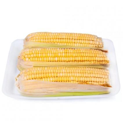 Milho Verde AGROMIL Bandeja