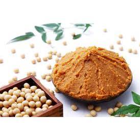 Missô de soja agroecológico 250g - Wylogus