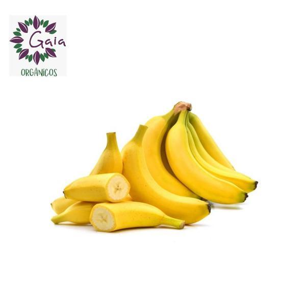Banana Prata Orgânica - Penca com 12 unidades