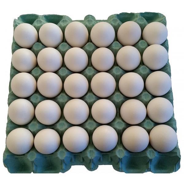 Ovos Brancos Bandeija com 30 unidades