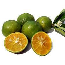 Limão Rosa Orgânico (500g)
