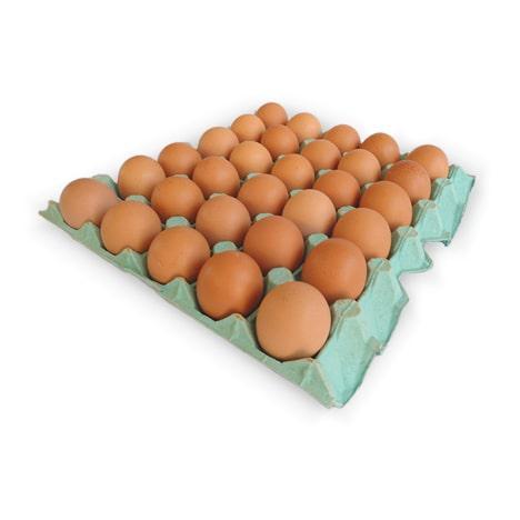 Ovos Vermelhos NOVA ALIANÇA com 30 Unidades