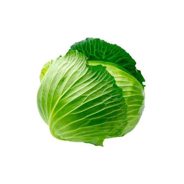Repolho Verde Organico Unidade