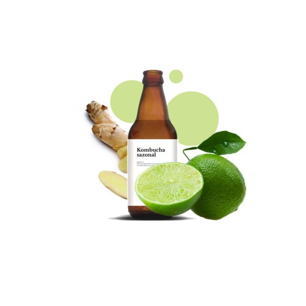 Kombucha - Limão e Gengibre