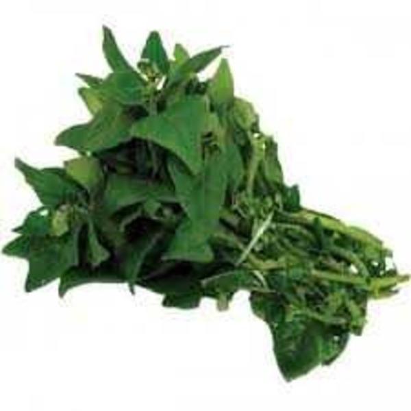 Espinafre (1 maço)- Orgânico