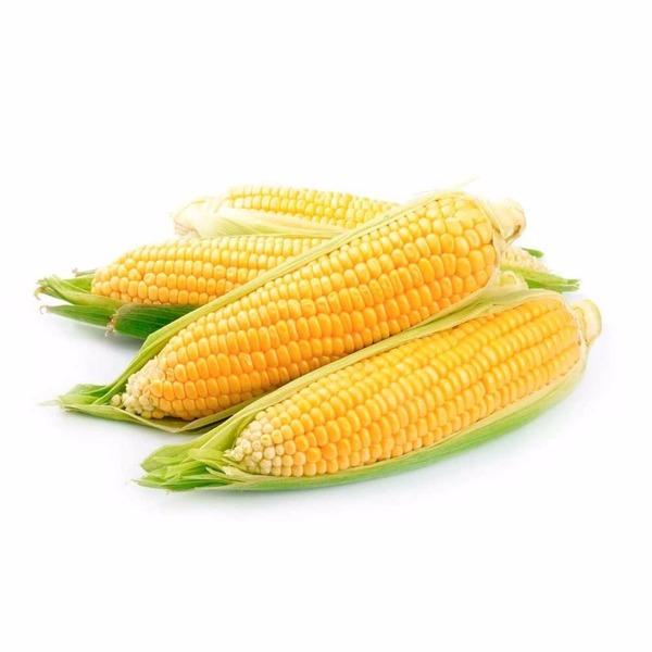 Milho Verde (1Kg)- Orgânico