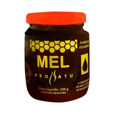 Mel Pronatu 300g - Produto Naturall