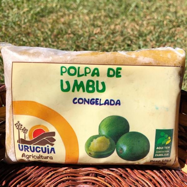 Polpa de Umbu (200g)
