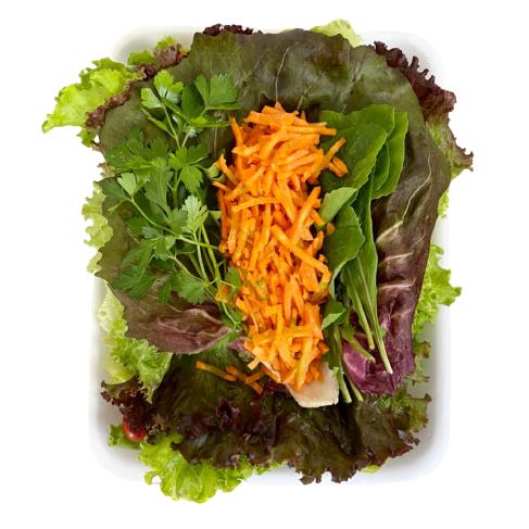 Salada Moda Fito 300g