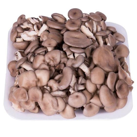 Cogumelo Shimeji Branco 200g