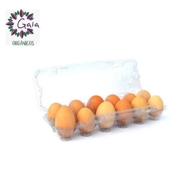 Ovos Orgânicos e Caipira de Produtores Locais - 1 dúzia