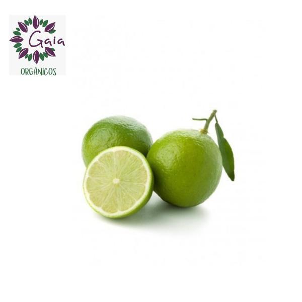 Limão Tahiti Orgânico 1 Kg
