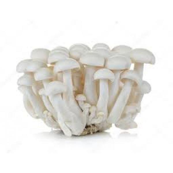 Cogumelo Shimeji Branco Orgânico 200g