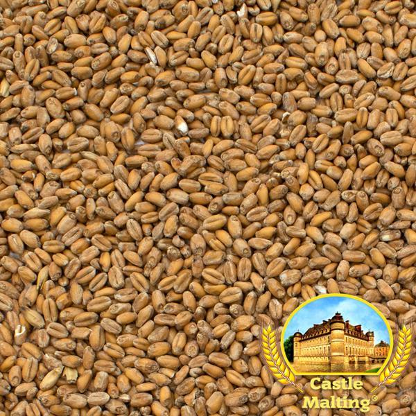Malte Château Wheat Blanc (Trigo) Granel Inteiro