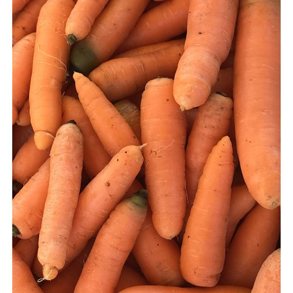 Cenoura (molho ou 500gr)