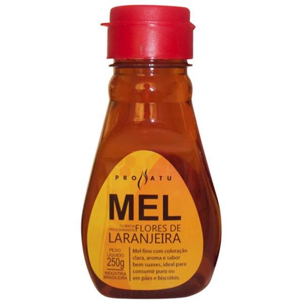 Mel Flores de Laranjeira 250g - Produto Natural