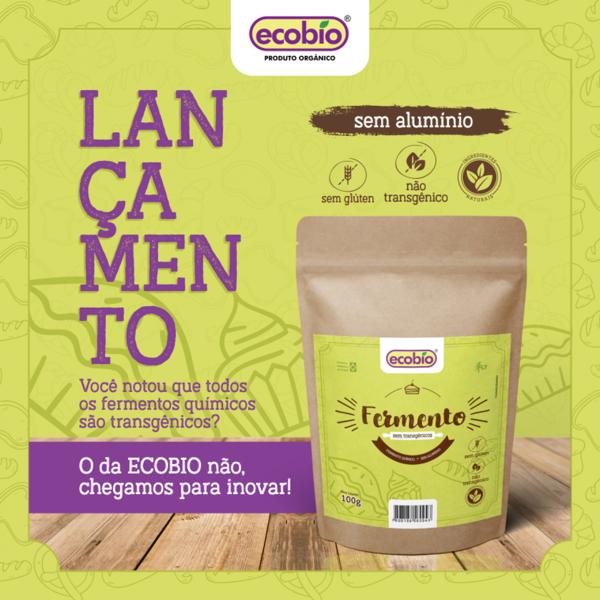 Fermento Não Transgênico Ingredientes Naturais Sem Glúten (100g)