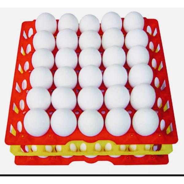 Ovos Brancos ALEXAVES Grandes com 30 Unidades