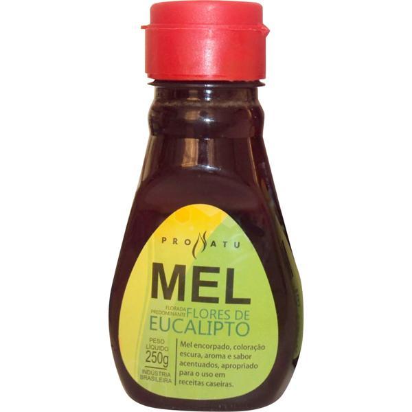 Mel Flores de Eucalipto 250g - Produto Natural