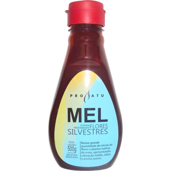 Mel Flores Silvestres 500g - Produto Natural