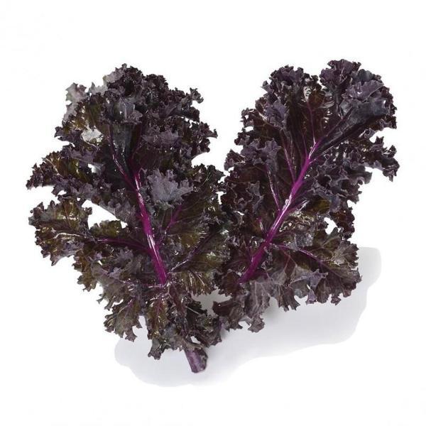 Couve kale roxa ( maço) Orgânico