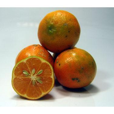 Limão Capeta Orgânico (aprox. 600g)