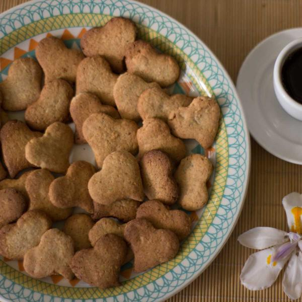 Biscoito integral de coco e castanhas 100g - Sá Vita