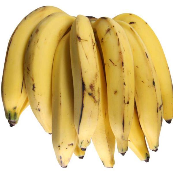 Banana da Terra (penca) podem ir verdes