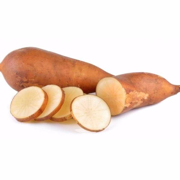 Batata Yacon (500g)- orgânica