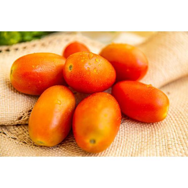 Tomate Italiano (aprox. 500g)
