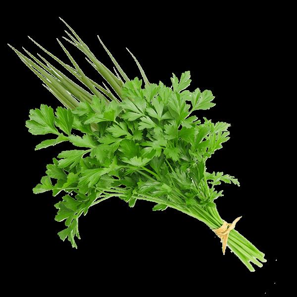 Cheiro Verde Orgânico (maço)