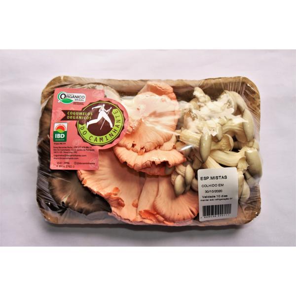 Cogumelos mistos orgânicos 200g - Do Caminhante -(OFERTA VALIDADE 09/06)