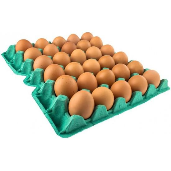 Ovos Vermelhos XEL 30 Unidades