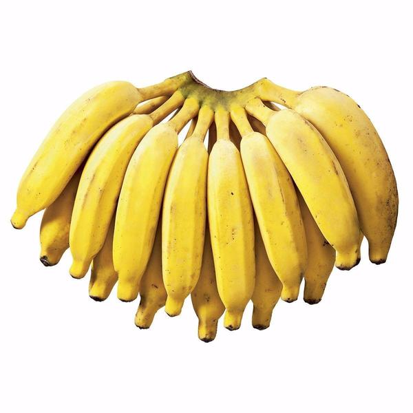 Banana Prata (KG)- Orgânica ( podem vir verdes)