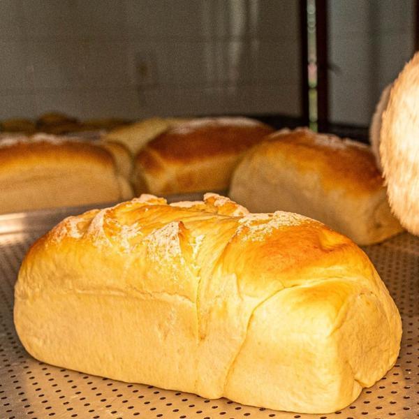 Pão de Forma Orgânico - 440g