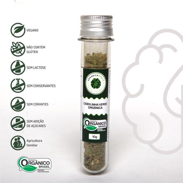 Cebolinha Verde Orgânica 10g