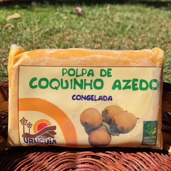 Polpa de Coquinho Azedo (200g)
