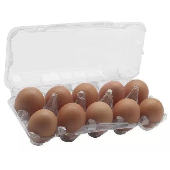 Ovos Caipira 10x1