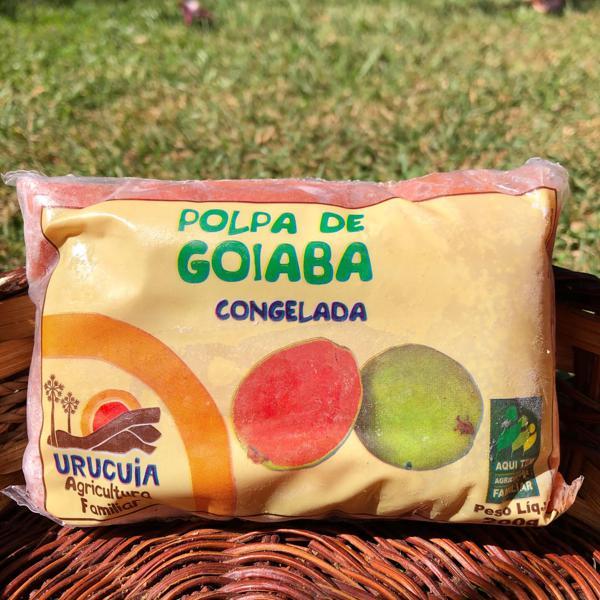 Polpa de Goiaba (200g)