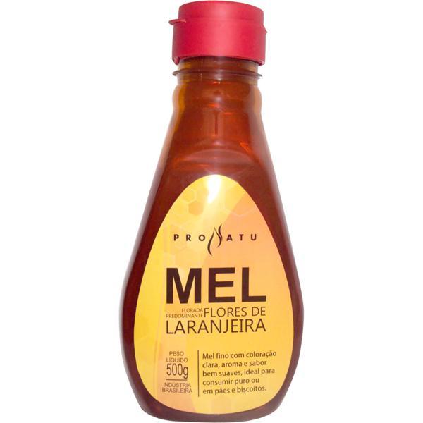 Mel Flores de Laranjeira 500g - Produto Natural