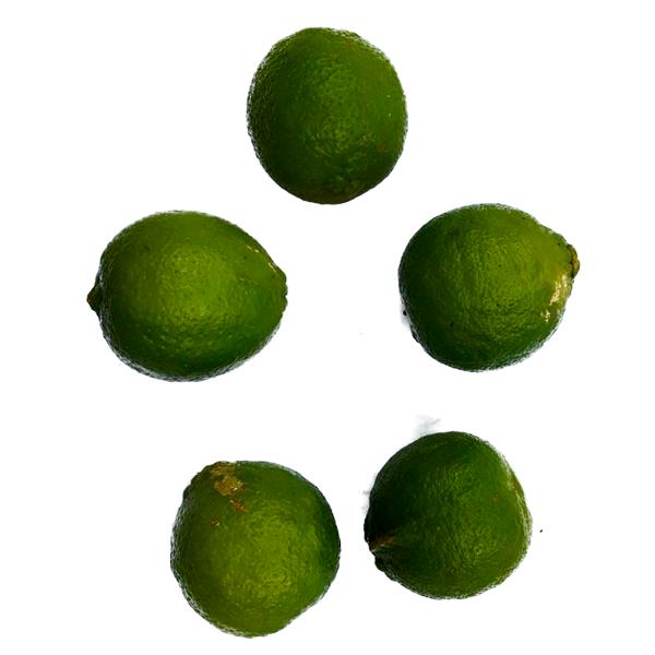 Limão Taiti (10 Unidades)