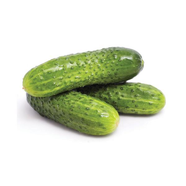Pepino Verde Conserva