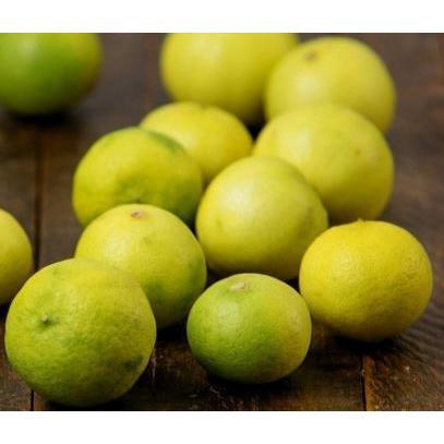 Limão Galego Orgânico (aprox. 600g)