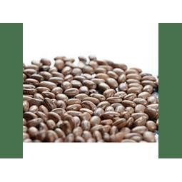 Feijão carioquinha agroecológico 1kg Dom Divino - Vista Alegre
