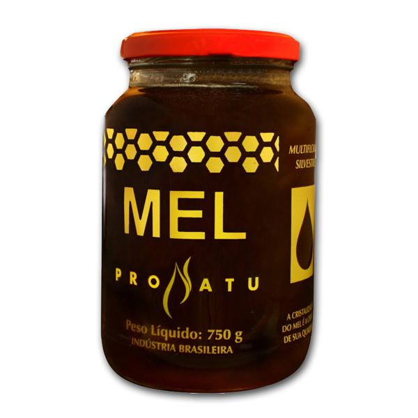 Mel Pronatu 750g - Produto Natural