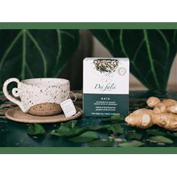 Chá Gaia hortelã piperita, gengibre e canela (caixa c/ 15 sachês) - Dei Falci