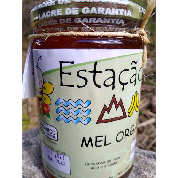 Mel orgânico - 480g