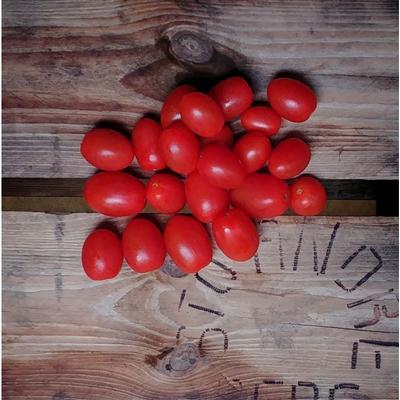 Tomatinho (400gr)