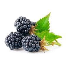 Amora Fresca Agroecológica (bdj)