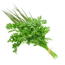 Tempero Verde Orgânico (molho)